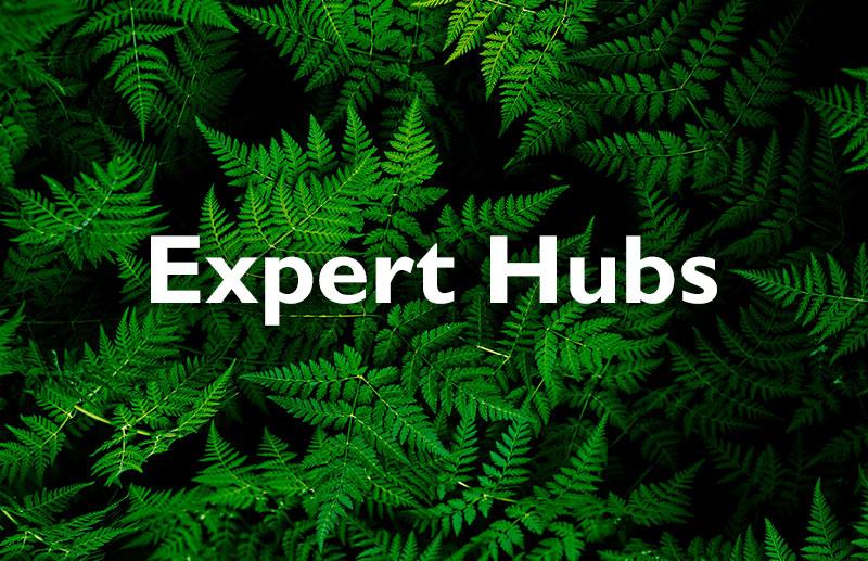 Expert Hubs 2021: vendor-partner relationships