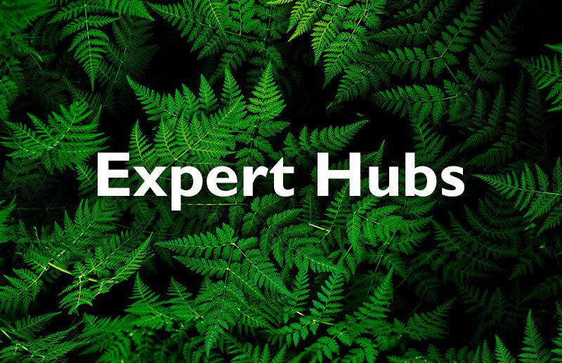 Expert Hubs: Energy